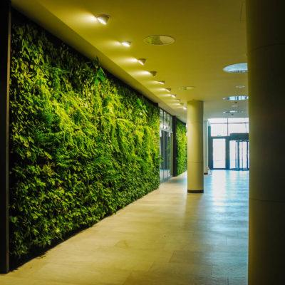 zielona-ściana-w-biurowcu.jpg