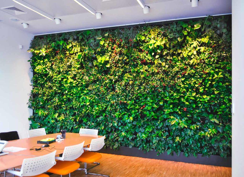 Zielona ściana (ogród wertykalny) w biurze Pro-urba
