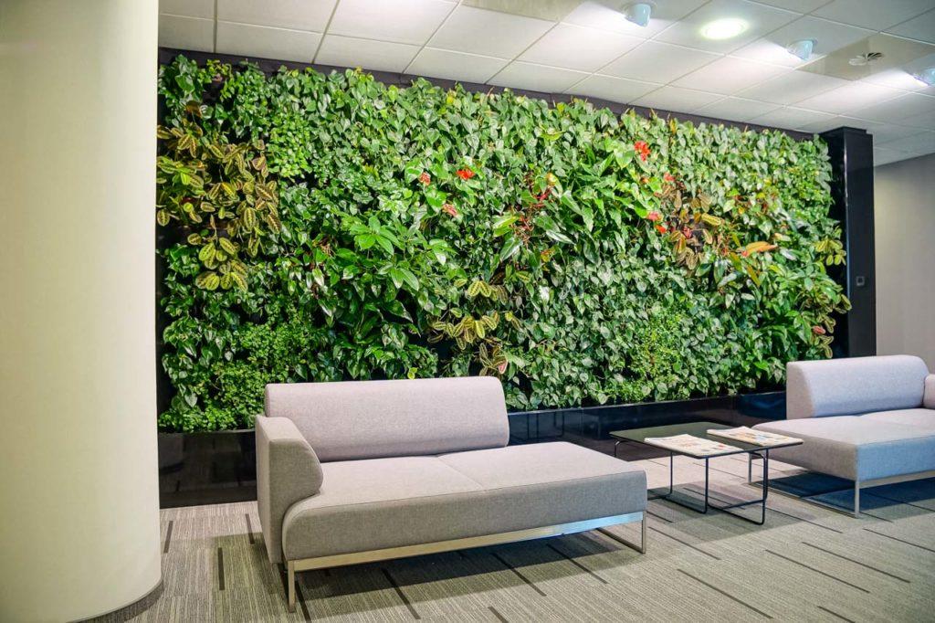 Zielona ściana w biurze Prochem