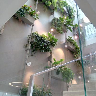 Biurowiec-Flis-Sp.j.-w-Mszczonowie-2-zielone-biuro-zielona-ściana-e1544385207854.jpg