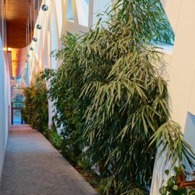 Hotel-Narvil-Serock-zielone-wnętrza-1-e1544385266342.jpg