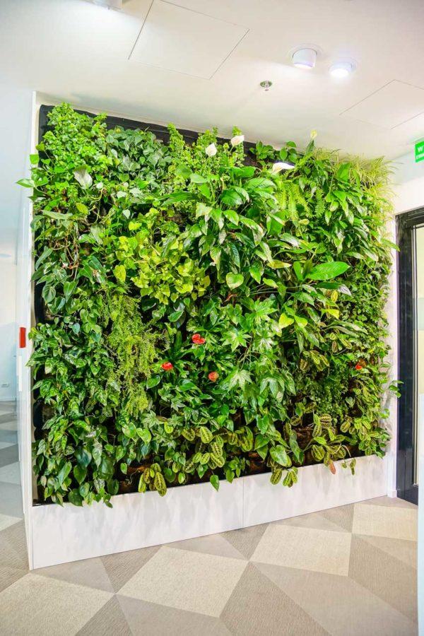 Biuro ARS Retail zielona ściana ogród wertykalny