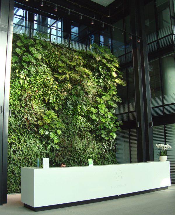 Eurocentrum recepcja zielona ściana ogród wertykalny
