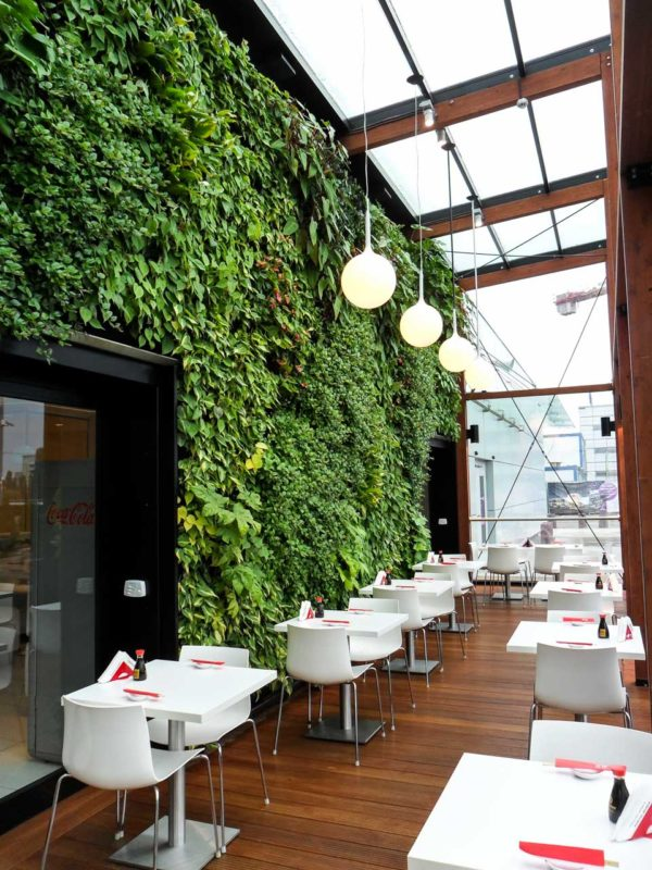 Ogród zimowy w Galerii Mokotów - żywa zielona ściana