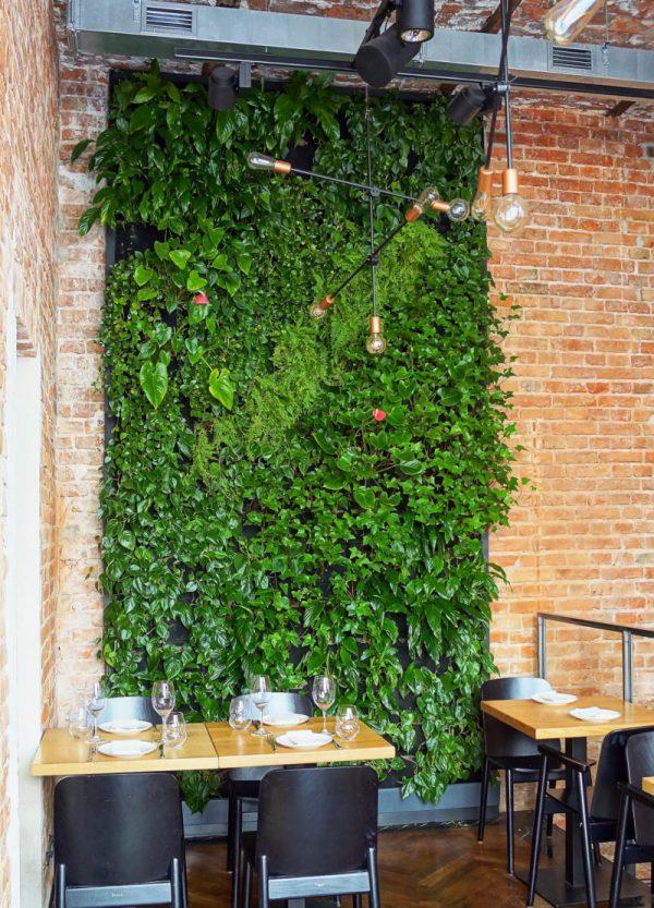 restauracja kieliszki na próżnej ogrod wertykalny zielone sciany